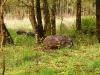 osterschiessen-rutenmuehlen-118
