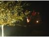 bsv-weihnachtsfeier-005