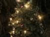 bsv-weihnachtsfeier-133